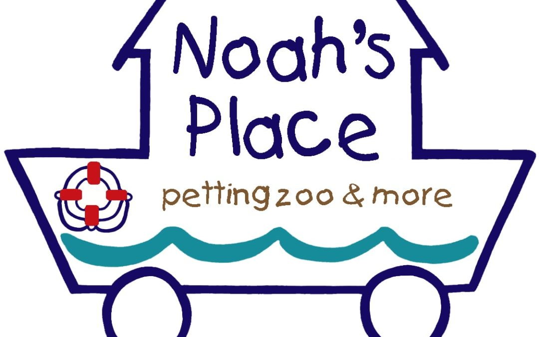 Noah's Place – Party Ideas and a Chance to Win One!