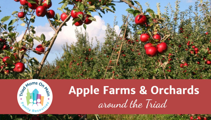 Pick-Your-Own Apple Farms & Orchards
