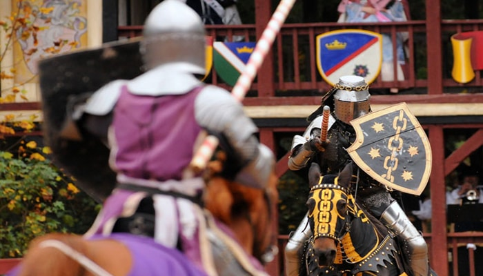 Oct & Nov, 2019: The 26th Annual Carolina Renaissance Festival