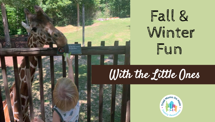 Things to Do with Your Toddlers/Preschoolers This Fall & Winter